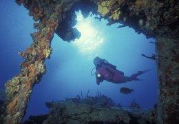 activities-diving